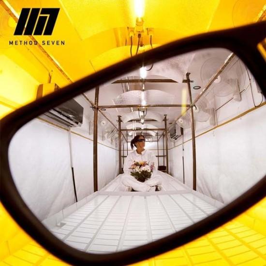 Gafas para interior LED (Cristal Verde) Method Seven CULTIVATOR